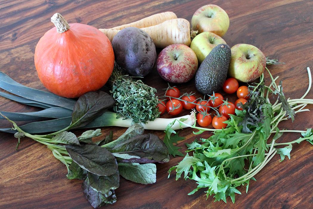 Frisches Gemüse Projekt Zuckerfrei