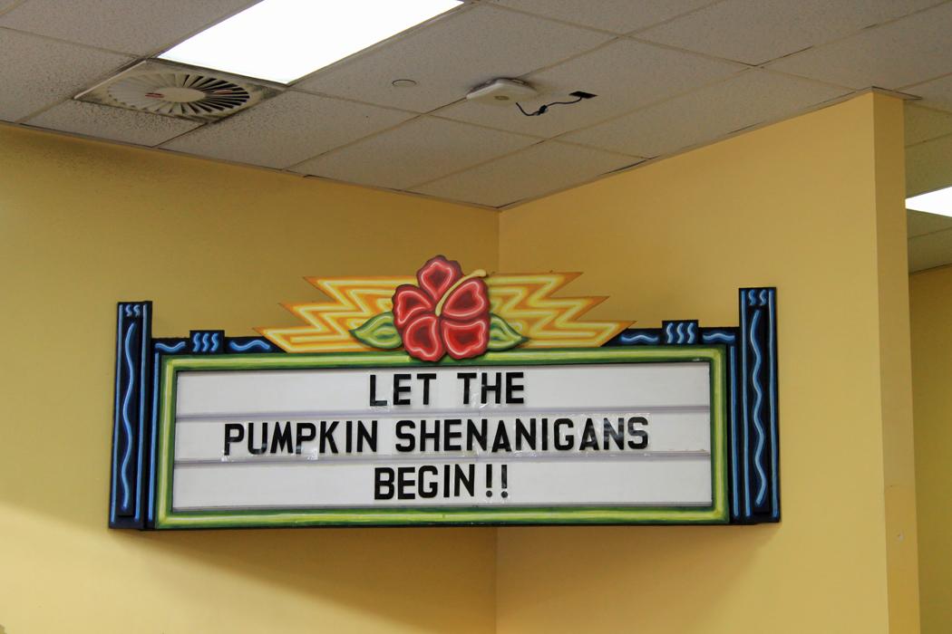 Pumpkin season Trader Joes