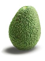 Reifegrad Avocado grün