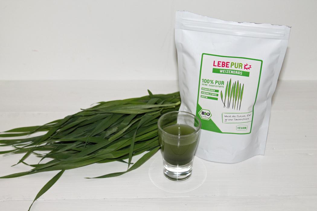 Weizengras Shot Lebepur