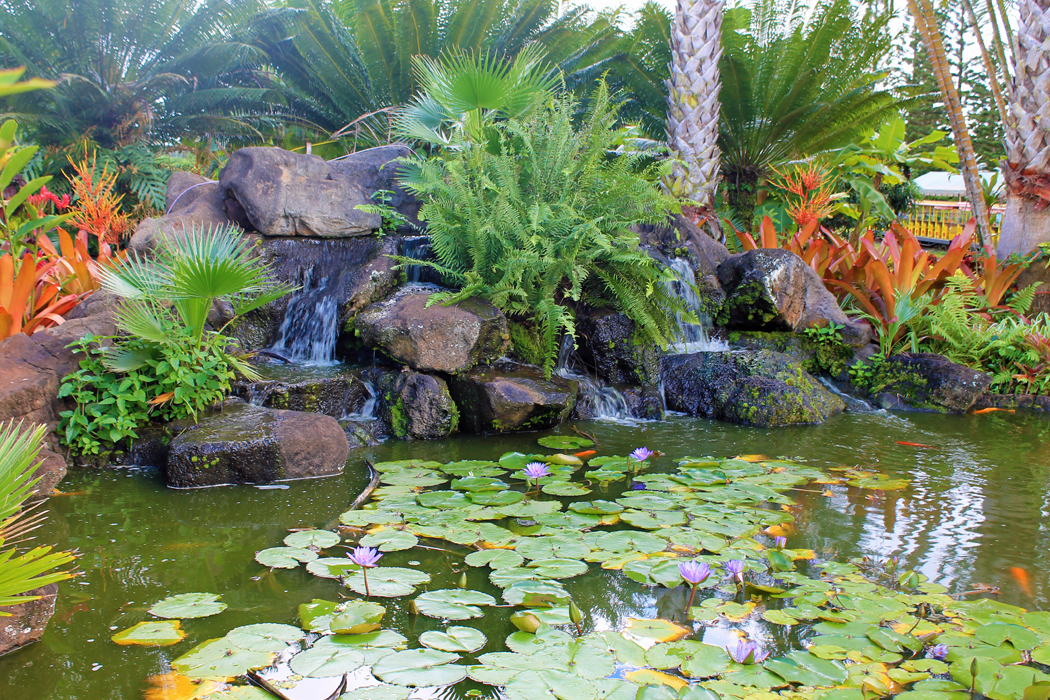 Dole Garden Plantation1