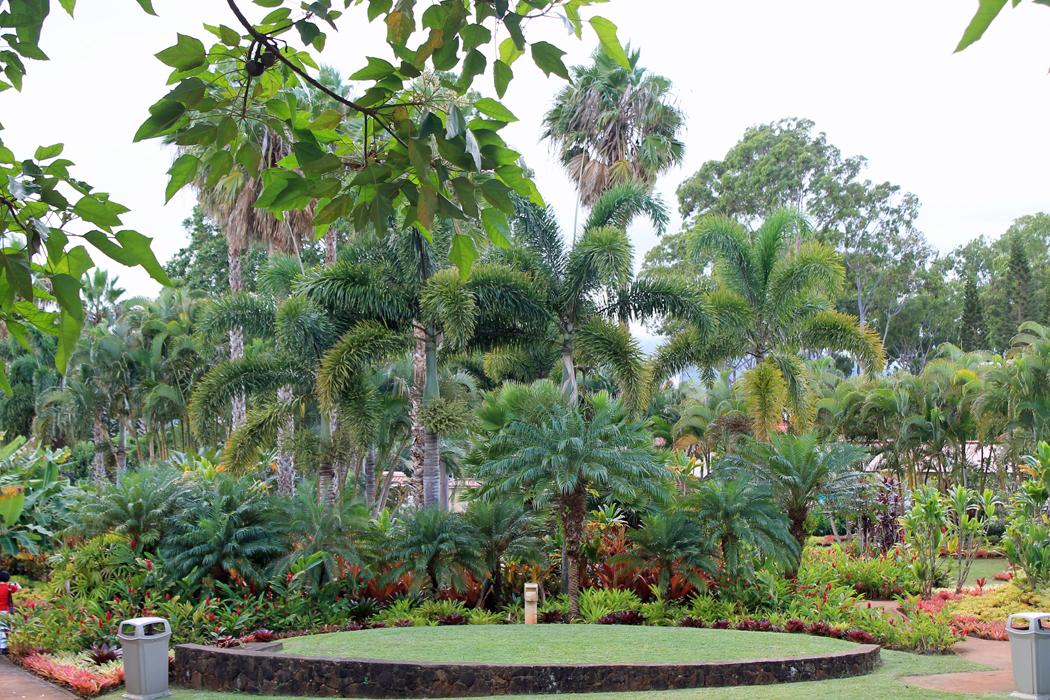Dole Garden Plantation4
