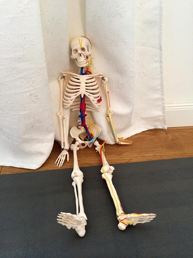 Yoga_Anatomie_Adjustments